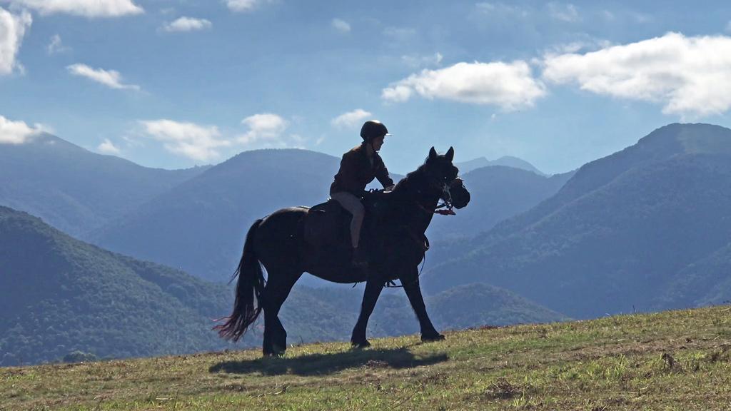 Cheval Hautes Pyrénées les oréades galop