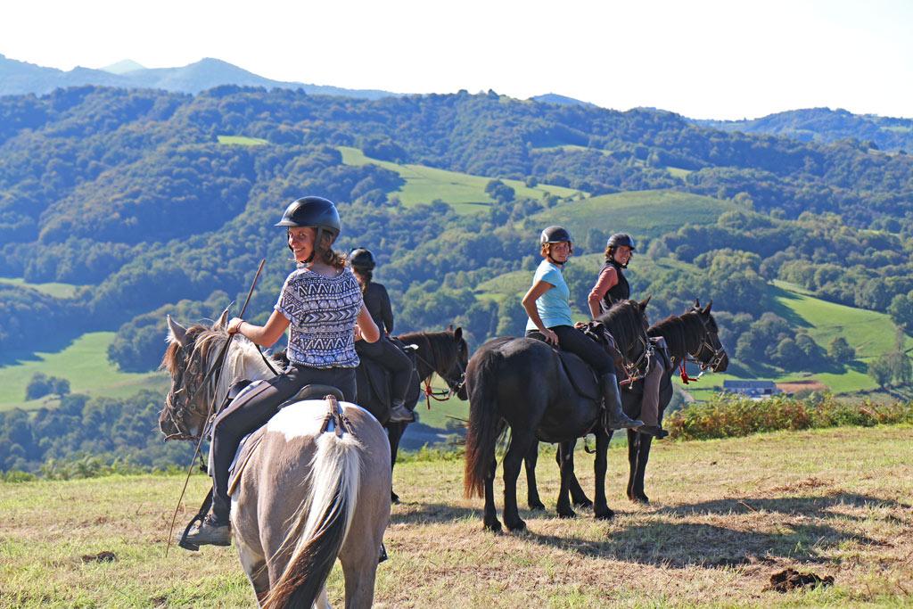 chevaux heurex les oréades cheval hautes pyrénées
