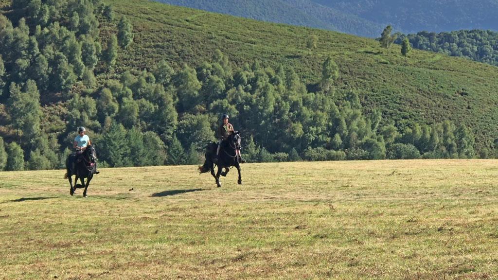 Galop cheval hautes pyrénées les oréades