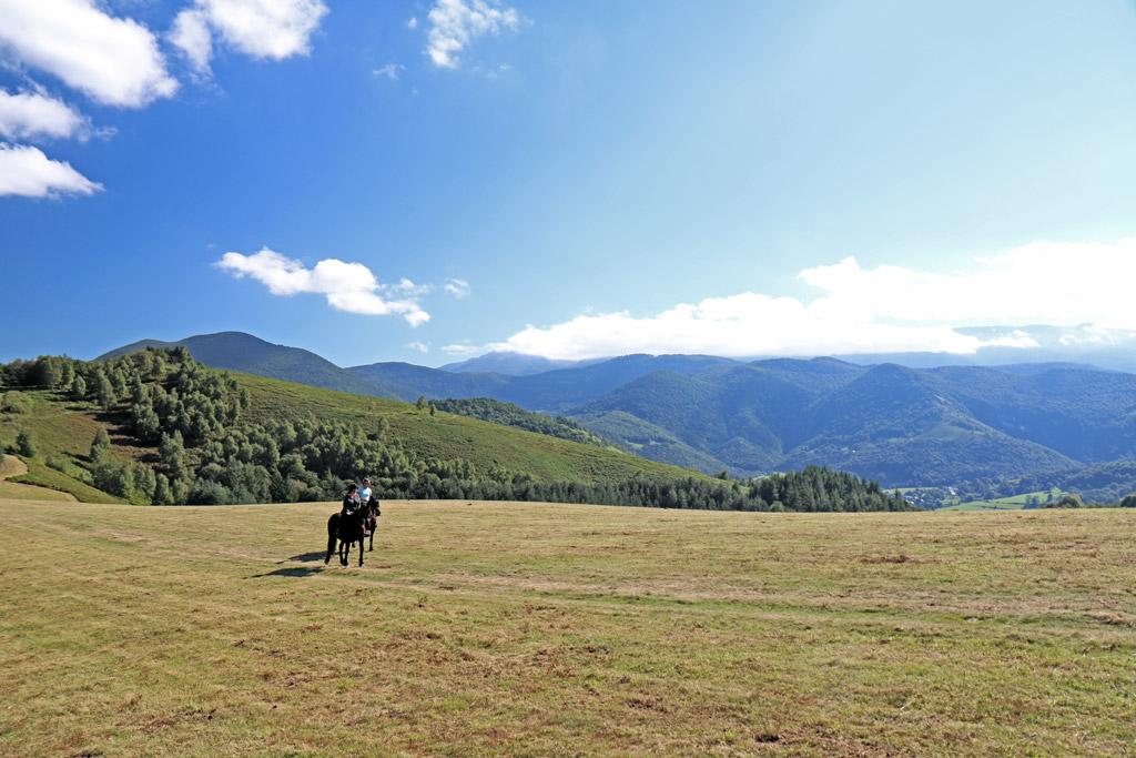 Plaine Galop cheval hautes pyrénées les oréades