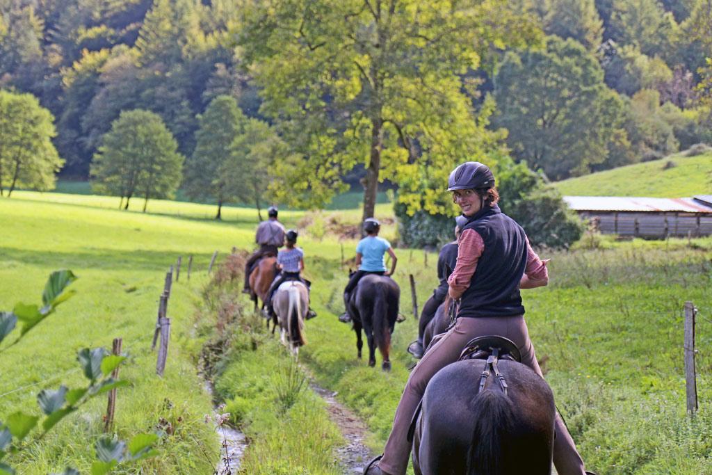 cheval hautes Pyrénées les oréades Tifenn